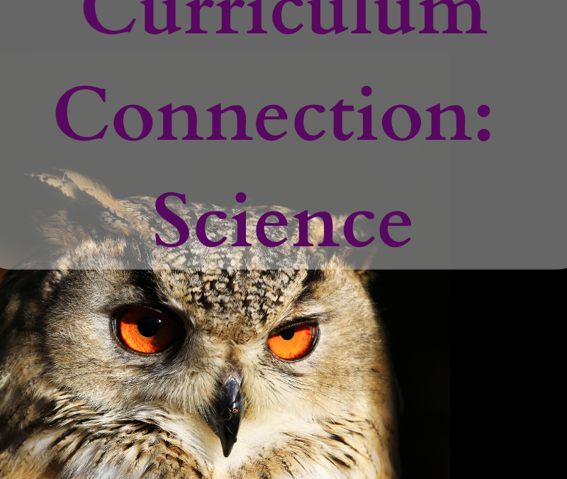 Wisdom Curriculum Connection – Science